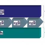 diagram - 3 types of capabilties