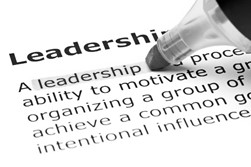 Case for Greater Collective Leadership figure